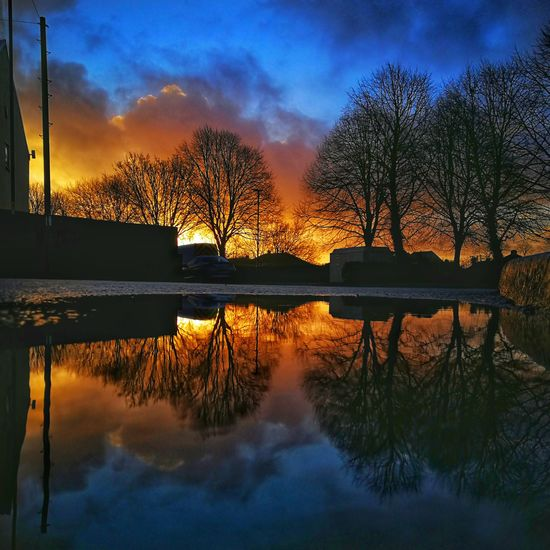Morning sunrise reflection Huaweiphotography Leica Lens Oo Reflection Low Angle View Tree Water Sunset Lake Symmetry Silhouette Reflection Reflecting Pool Sky Cloud - Sky Standing Water Puddle Countryside Romantic Sky Idyllic Moody Sky Atmospheric Mood Dramatic Sky Visual Creativity