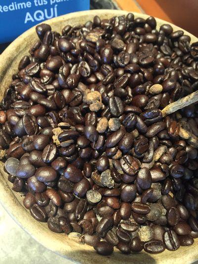 Semillas de café Isherqro Isher Querétaro Queretaro,Mexico