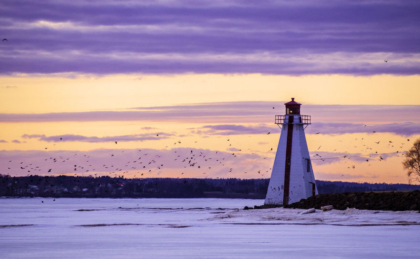 Sunset over the Brighton Beach Range Lighthouse in the late winter Sky Cloud - Sky Sunset Water Architecture Lighthouse Built Structure Sea Scenics - Nature Tower Nature No People Building Land Tranquil Scene Beauty In Nature Tranquility Outdoors Canada Charlottetown Atlantic Canada City Cityscape Bird Birds Colors Colorful Frozen March Winter Wintertime Dusk Landscape Outdoor Photography Lighthouse