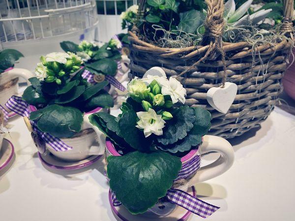 Flower Dekor