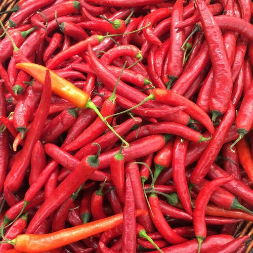 Full frame of red chili peppers