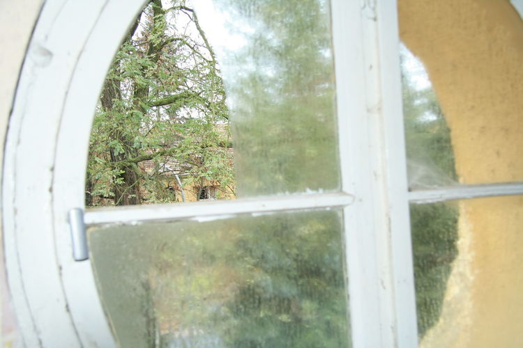 Dachboden Fenster Flu Haus Kaserne Lost Places Skeltet Katze, Hund Spinnweben Treppe Turkey Verlassener Flur Verlassenes Theater Waschbecken Weihnachtsbaum