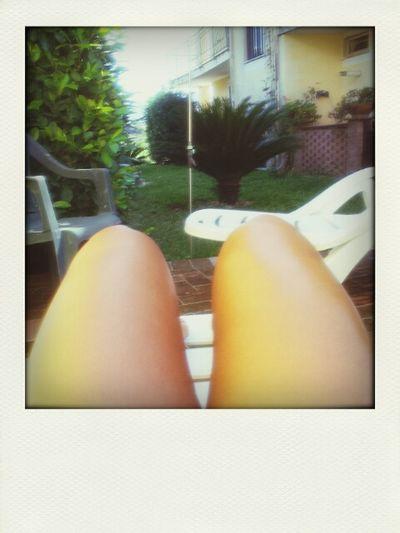 Il mio giardino .. Giardino La Mia Casa Sole...☀