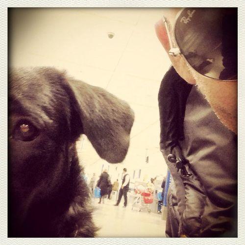Selfie me & my dog