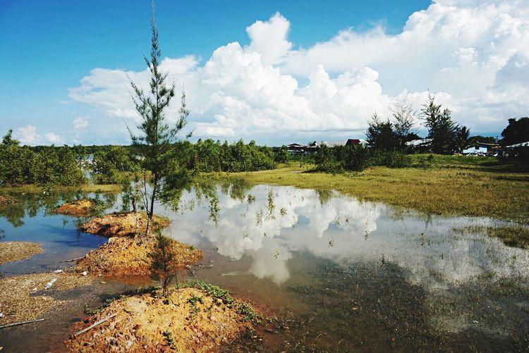 Reflection of sky on pond