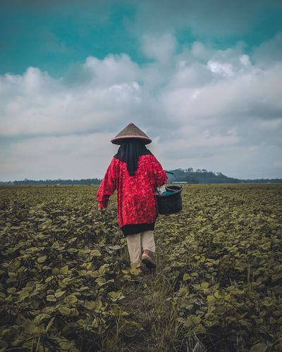 a women walking on the farm Mobilephotography Redminote4photography Cereal Plant Rural Scene Women Agriculture Farmer Working Field Asian Style Conical Hat Farm Scarecrow Farmland