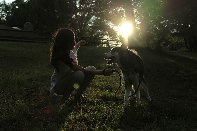 Cute girl playing with dog on grassy field
