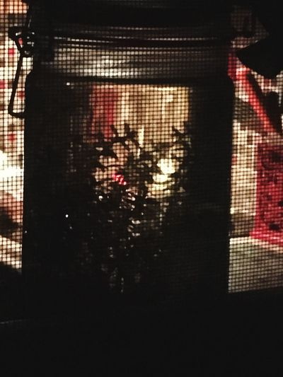 Indoors  No People Window Illuminated Close-up Night Jararium