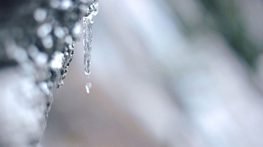 Close-up of icicles melting