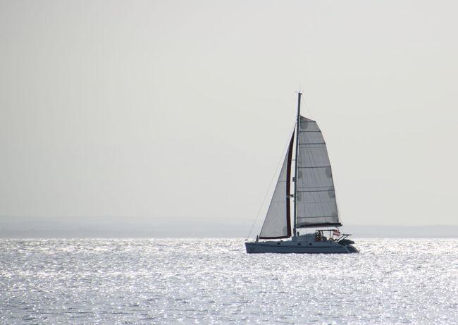 Croatia Sailing Ship Copy Space Day Horizon Over Water Nature No People Outdoors Sailboat Sailing Sailing Holiday Sea Sky Water