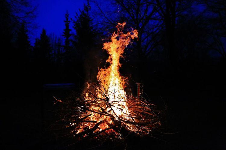 Brandenburg Brieselang Feuer Lagerfeuer Nacht Rumpelstilzchen Fire Fireplace Forest Wald