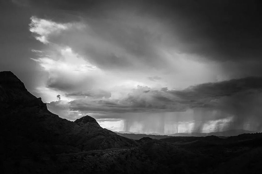 Drizzle Black & White Landscape