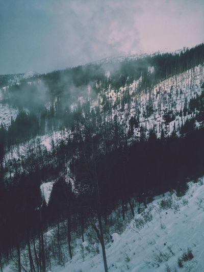 Humming Tatras