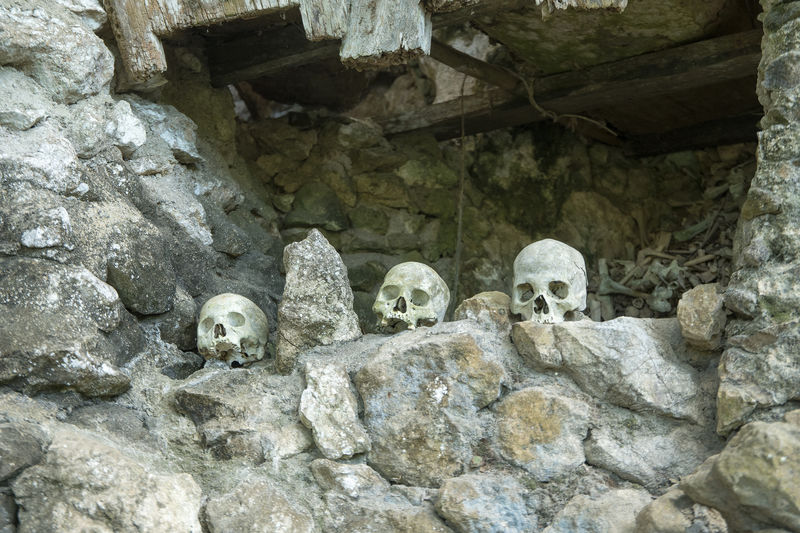 Low angle view of skulls in graveyard