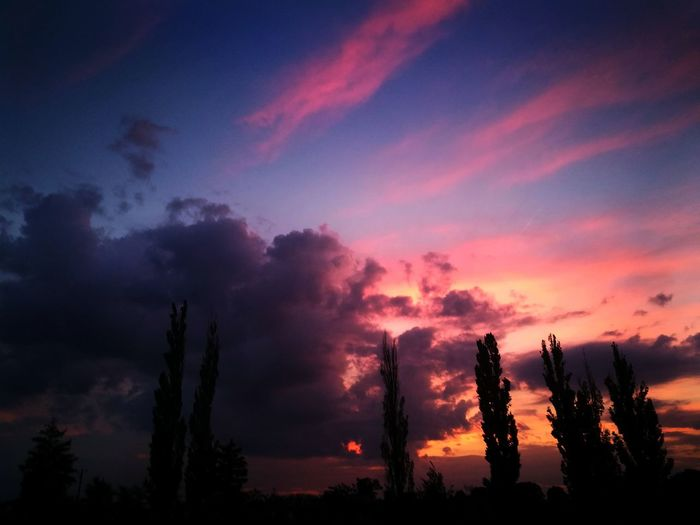 Sky Cloud - Sky Sunset Silhouette Scenics - Nature Beauty In Nature Plant Tree Tranquil Scene Tranquility No People Nature Non-urban Scene Orange Color Environment Dramatic Sky Growth Outdoors Dusk Idyllic Pollution Romantic Sky Coniferous Tree