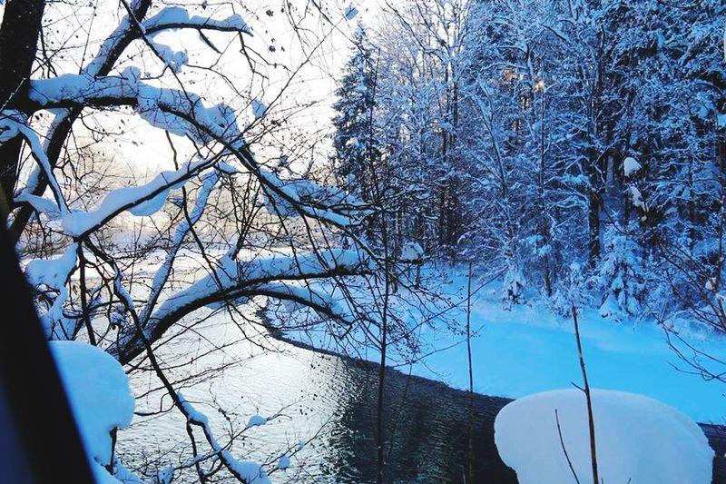 Deutschland Kempten (Allgäu) Snow Wintertime Beat-fighter Winter Landscape Landscape Photography Allgäu A winters tale ???