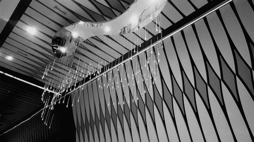 Chandelier Blackandwhite Black & White Taking Photos Chandelier Check This Out