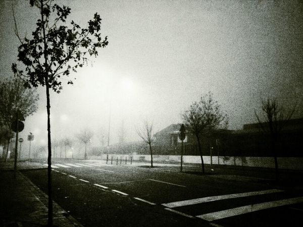 Blackandwhite Winter Mist Clouds And Sky Misty Morning Urban Nature Urban Landscape Samsung Galaxy Note II Movilgrafias Graphic Nature