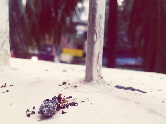 That's how life goes on, leaving the ashes behind.