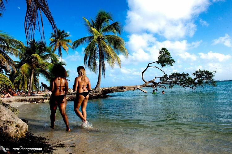 People Tourism Tropical Climate Beach Water Bay Of Water