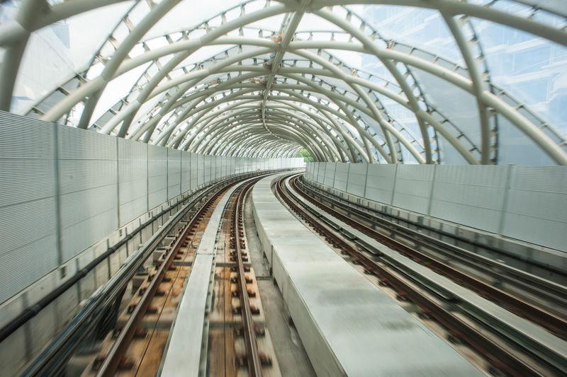 Empty covered railroad tracks