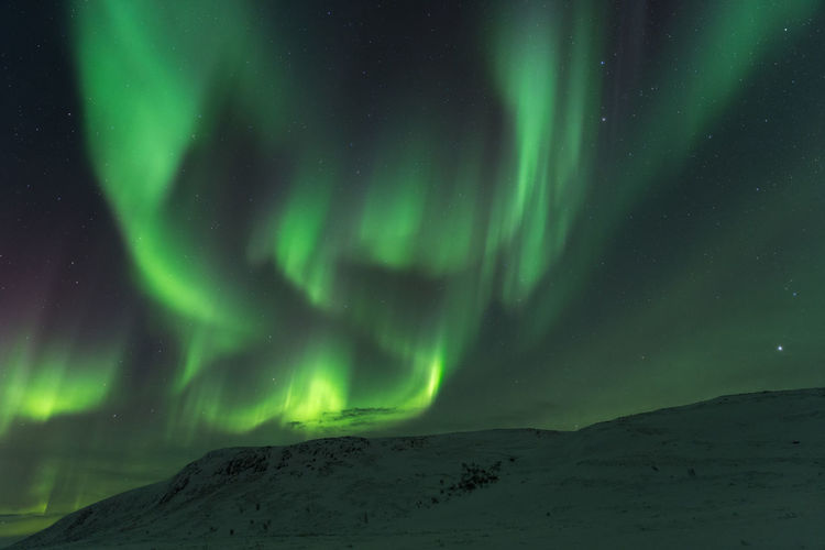 Northern lights at the flat mountain of Northern Norway, Finnmark Alta Norway Aurora Borealis Finnmark Northern Lights Norway Winter Astronomy Attractions Aurora Polaris Beauty In Nature Cold Temperature Night No People Nordlys Scenics Snow Star - Space Tourism