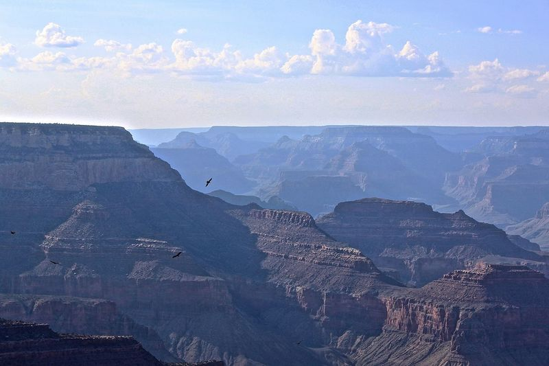 Q Quietness Quiet Places Quiet Moments Quiet Grand Canyon USAtrip Great Atmosphere Great View Beautiful Nature Beauty In Nature Majestic Nature Majestic Tranquility Outdoors Landscape Idyllic No People Nature Tranquil Scene Landscapes With WhiteWall Blue Wave