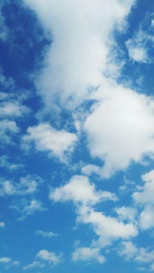 きれいな空が撮れました❗️