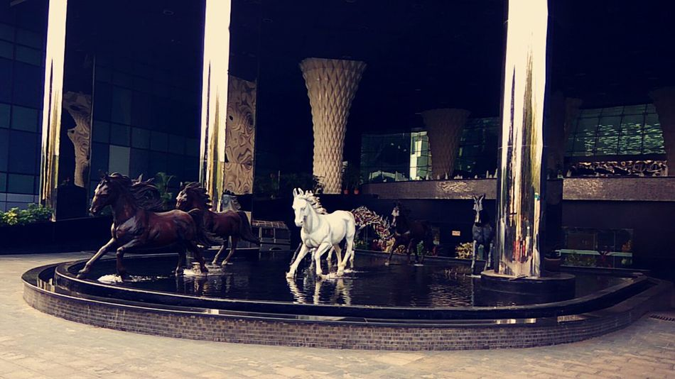 Structures Horses Animal Pillars Building Exterior Water Reflections White Horse Architecture Photography Indiapictures Sahara Star Mumbai Mobilephotography Fountain Running Horses The Architect - 2017 EyeEm Awards