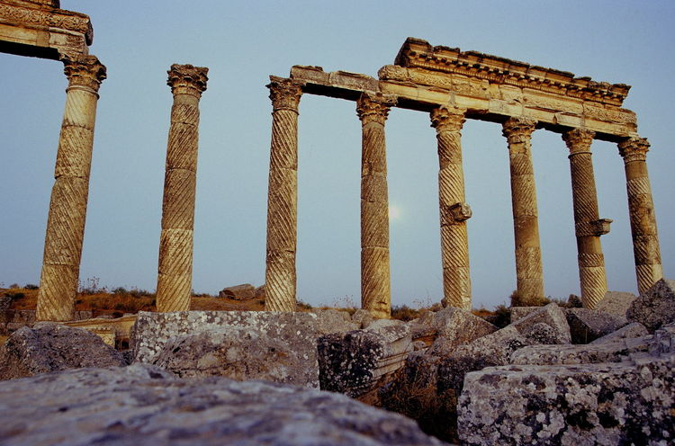 Ancient Ancient Civilization Antiquity APAMEA Archaeology Architecture Built Structure Clear Sky Colonnade Columns Day Fluting Great Colonnade History No People Old Ruin Outdoors Roman Antiquity Sky Spiral Spiral Fluted Columns Stone Stone Columns The Past Weathered