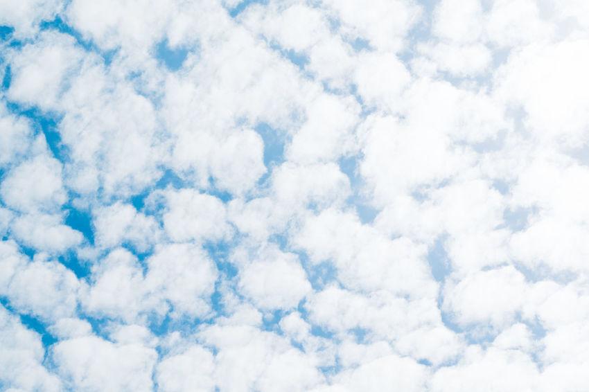 Cloud Cloudporn Cloudscape Fleecy Clouds Heaven Himmel Himmel Und Wolken Hochgeschaut Lookingup Nature Nature Photography Naturelovers Nikon Nikonphotography Schäfchenwolken Sky Sky And Clouds Skylovers Skyporn Wolken Wolkenhimmel The Great Outdoors - 2017 EyeEm Awards
