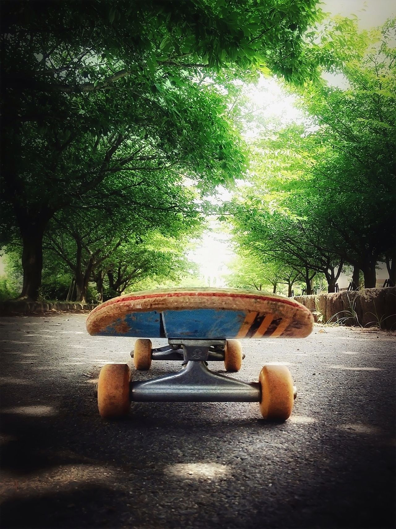 Close-up of a skateboard on road along trees