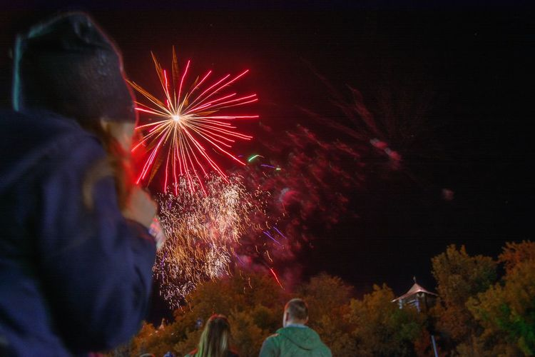 Rear view of firework display at night
