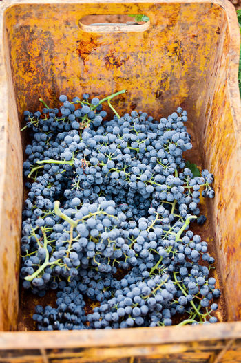 High angle view of grape in crate