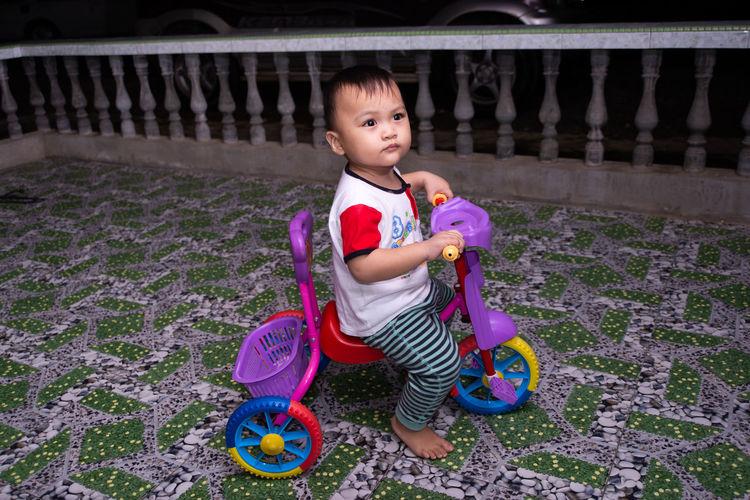 Portrait of cute boy sitting toy