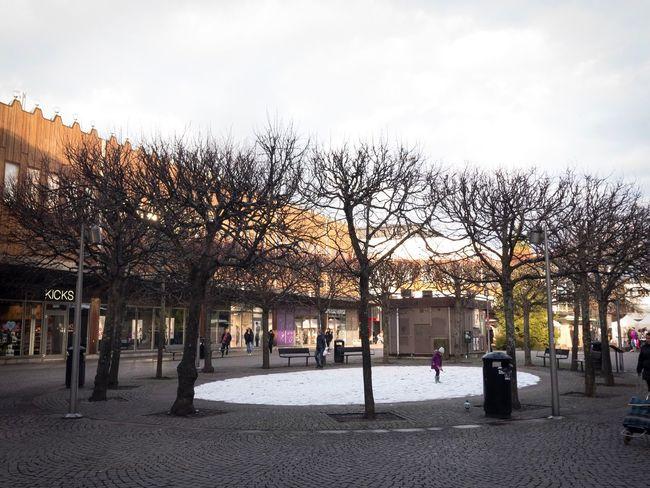 Snow ❄ Kid Tree Real People Day Winter I❤️🇸🇪 Godaminnen BraziliansAbroad Jagälskarsthlm