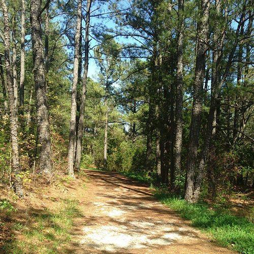 Beautiful day for a trail run with my mama. Happy Earth Day! 25Ktraining Nofilter Earthday Savasana365 RoseSavasana365 ExtremeSelfCare AYearOfSelfLove