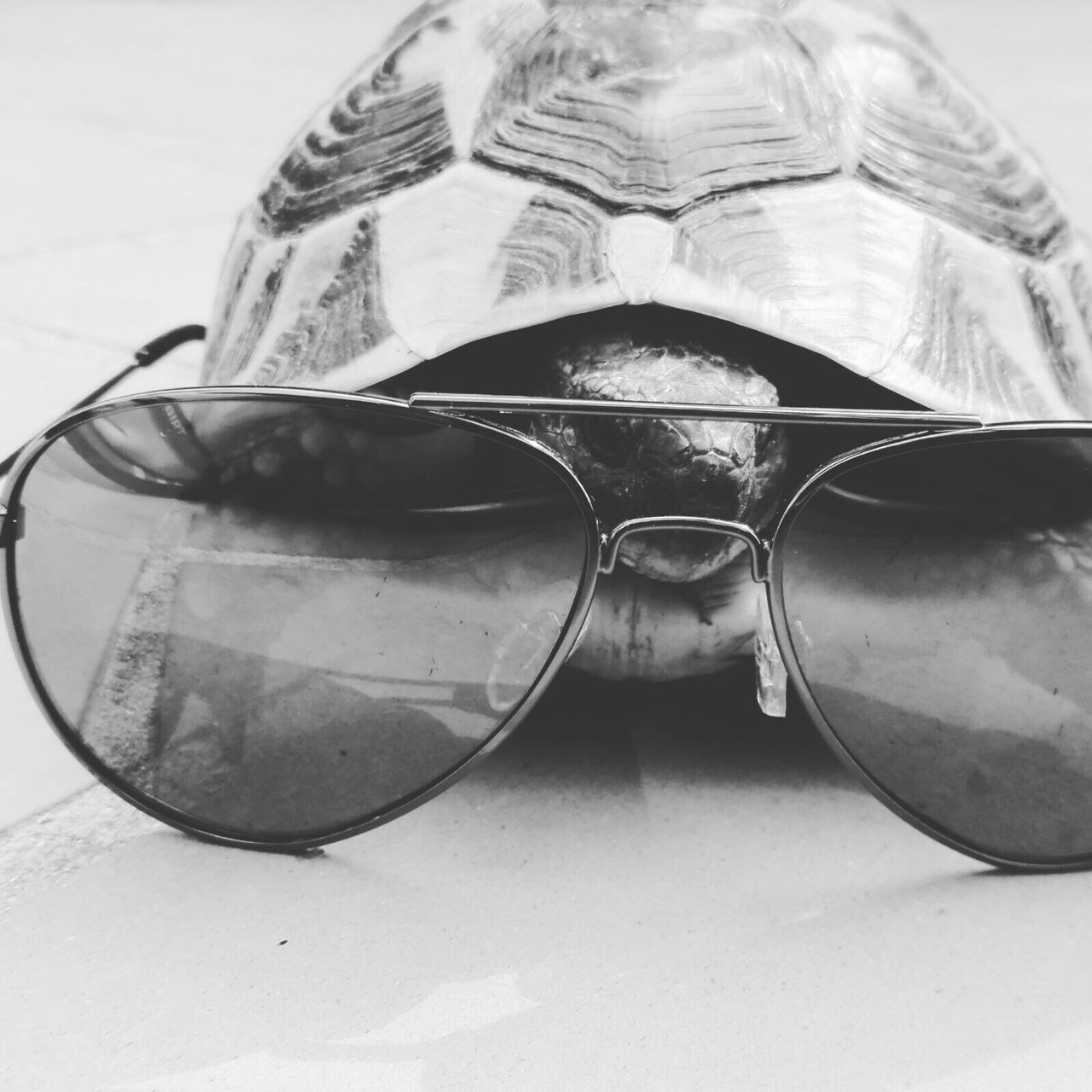 CLOSE-UP OF SUNGLASSES AGAINST BLACK AND WHITE