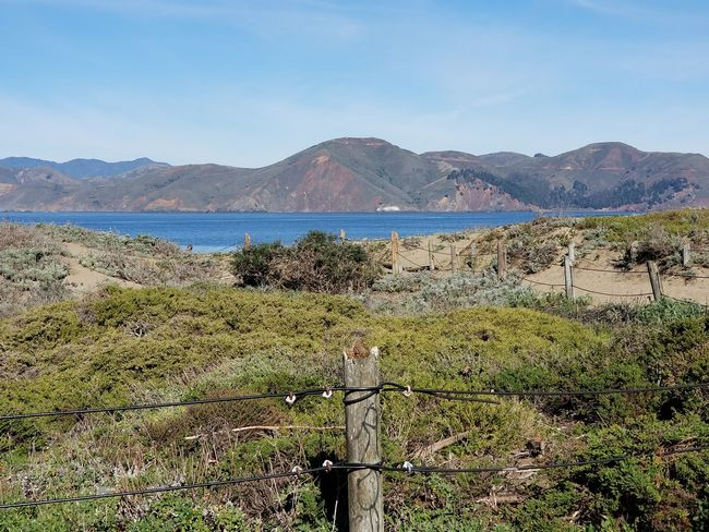 Baker Beach view across to Marin County Sunny Blue Sky Pacific Ocean Grass Beauty In Nature