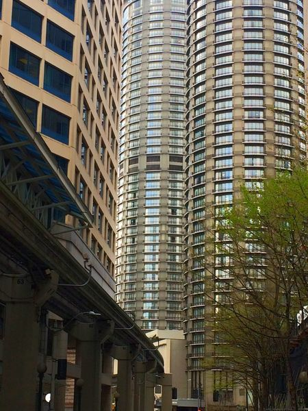 Skyscraper Architecture Built Structure Building Exterior City Business Finance And Industry Modern Low Angle View Day Business Window Cityscape Outdoors Apartment No People Downtown Seattle Buildings