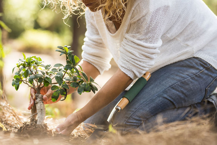 Midsection of woman planting plant in yard