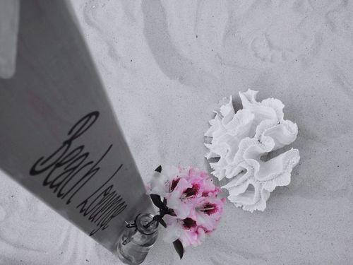 Beach Lounge Koralle Coral Rhododendron Nicoletta