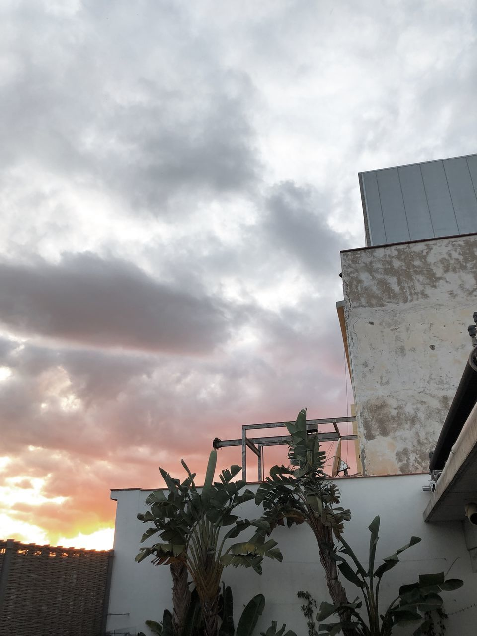 cloud - sky, built structure, sky, architecture, building exterior, low angle view, nature, plant, building, no people, sunset, outdoors, growth, tree, day, residential district, city, beauty in nature, overcast