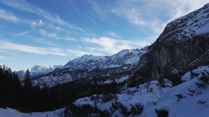 Snow Mountain Winter Cold Temperature Pinaceae Mountain Range Pine Tree Landscape Nature Forest Mountain Peak Cloud - Sky Shades Of Winter