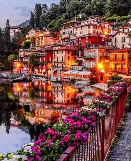 Flower Outdoors Travel Destinations Multi Colored Tree Built Structure Illuminated Architecture Plant Water Cityscape No People Building Exterior Nature Day River Sky City Varennalakecomo Varenna,Italy Varennaitaly Dreaming Of Awesome Places Dreaming..
