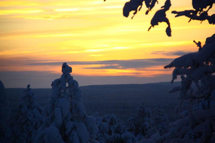Finland Scandinavia Beauty In Nature Environment Polar Circle Polar Climate Rovaniemi Scenics - Nature Sky Snow Sunset Winter