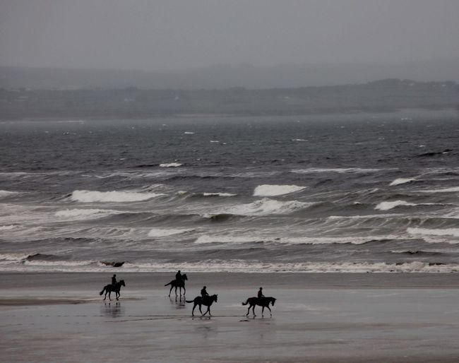 The Wild Atlantic Way. Enniscrone, Co Sligo Ireland. No better way to acquire an appetite for breakfast, than an early morning gallop along this wild and wonderful beach. Enjoying Life Tadaa Community Learn & Shoot: Simplicity Cloud And Water