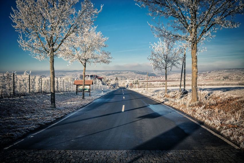 Into the blue... Sky Sunlight Tree No People Clear Sky Outdoors Day Nature Beauty In Nature Cold Temperature Winter Wonderland Wintertime Canon Hessen Fulda Germany Canonphotography Canon EOS 1300D The Way Forward Road Sign Road Frost Rural Scene Landscape Field