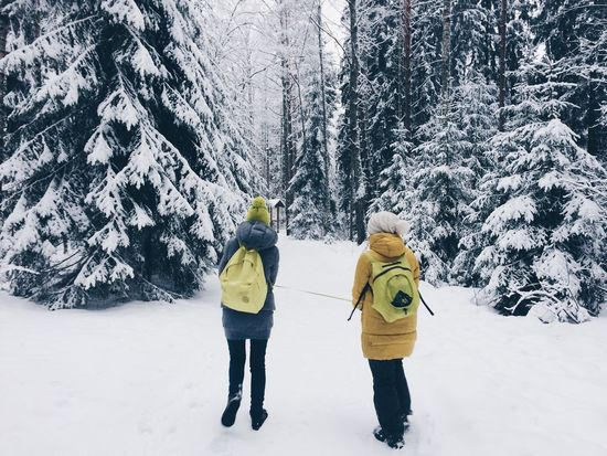 Adult Adults Only Beauty In Nature Bonding Cold Temperature Day Friendship Full Length Fun Leisure Activity Mature Adult Mature Men Nature Outdoors People Ski Holiday Snow Sport Togetherness Tree Two People Walking Winter Winter Sport Young Adult