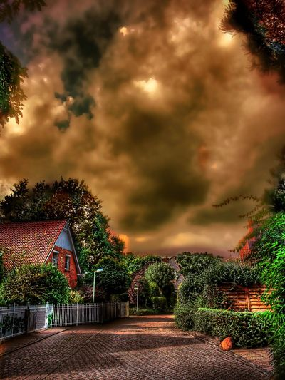 Beautiful Nature in Elmshorn Germany🇩🇪 House In The Forest Hdr_lovers Colorful Hdr Edit